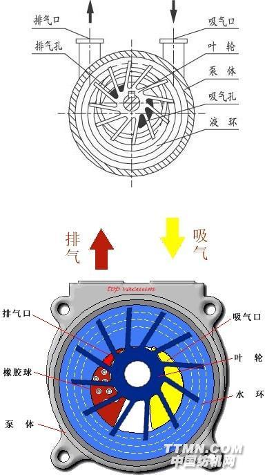 水循环式真空泵的工作原理
